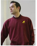 Sweatshirt Dickies - Burgundy - Gas Safe Logo